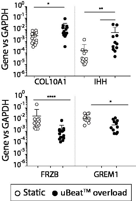 OA-gene-profile-uknee